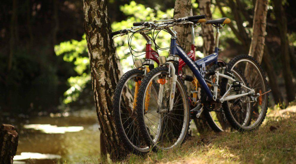 bikes_at_pond_web